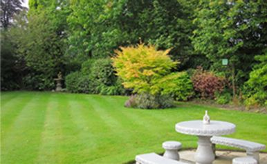 landscape garden fountain