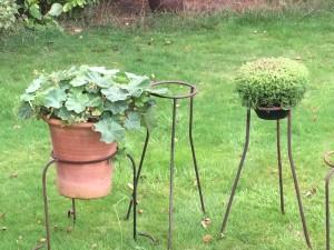 iron plant pot holders